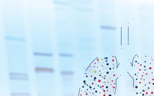 晚期NSCLC中新兴生物标志物和靶向治疗的整合: 挑战和解决方案